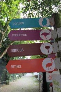 ornitologica