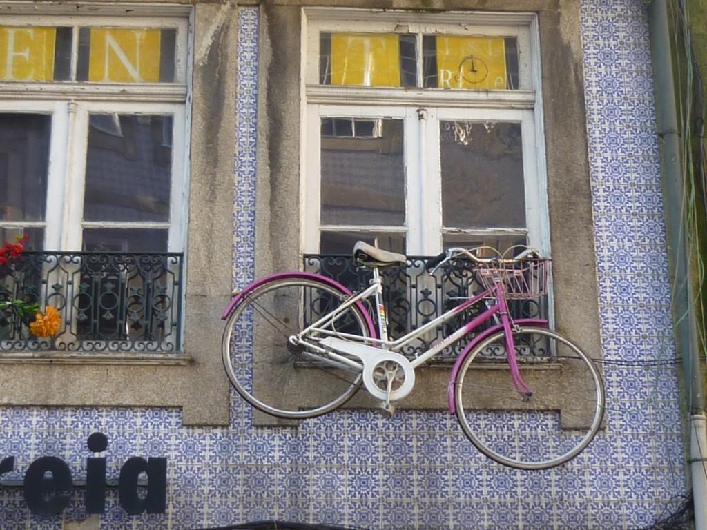 Sustentabilidade----janela