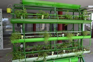 2-Jardim-Vertival-verde1-300x200