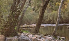 Paiva, um Rio com Vida