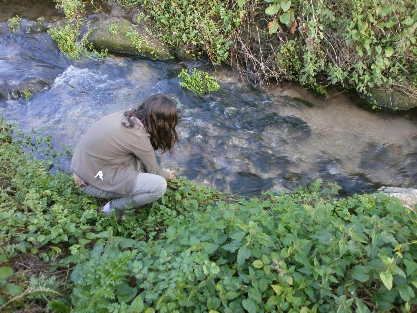 Foto 3 – Fizemos recolha de amostras de água da ribeira de São Martinho para posteriormente analisar o pH e o oxigénio dissolvido.