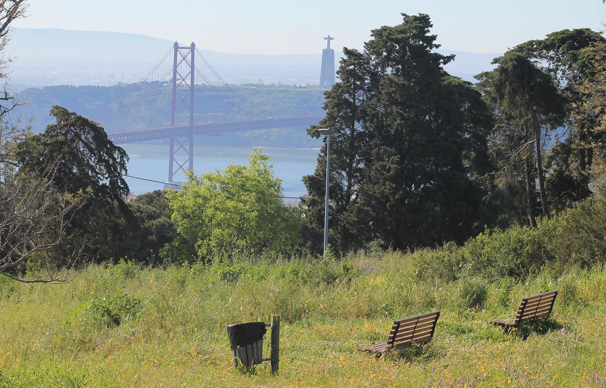 Descansar, contemplando a fauna e a flora e com uma vista sobre o Tejo.