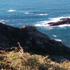 Eu sonho com a sustentabilidade ambiental do Algarve.