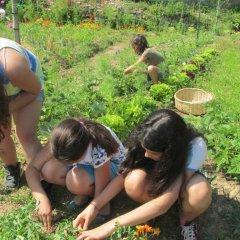 Agricultura Biológica: Um presente com futuro