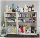 Veterinário, um médico e muito mais