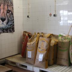 Nutrição: como se alimentam os animais no Zoo