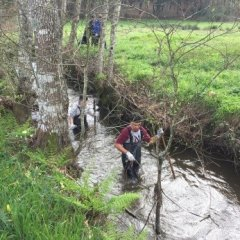 Ação de Limpeza do Rio Febros em Moure