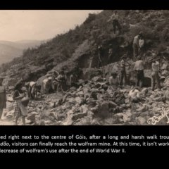 Wolfram Mine