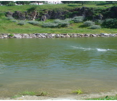 Lago Poluído