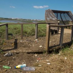 Marsh of Corroios: an environment rich either in bio diversity or in trash and scrap