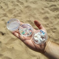As consequências do lixo marinho podem ser irreversíveis