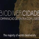 BiodiverCidade – comparação de Lisboa com Sintra
