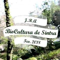 Biocultura de Sintra