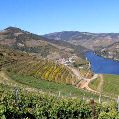 Quinta dos Murças, enoturismo e sustentabilidade