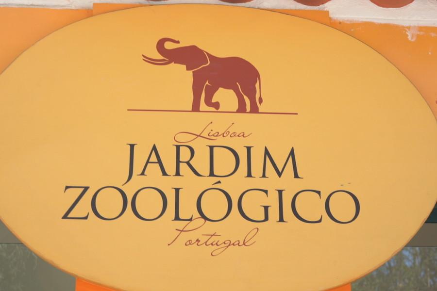 """Missão JRA """"ex situ"""" 2019 no Jardim Zoológico de Lisboa"""