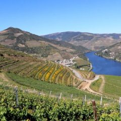 Quinta Dos Murças, Wine, Tourism and Sustainability