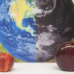Fruta feia vs. fruta bonita