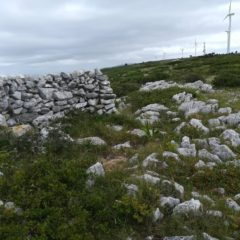 O Calcário da Serra de Aire e Candeeiros