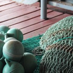 Redes ao Mar