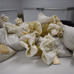 Banco mundial de sementes vai receber novas amostras portuguesas
