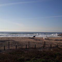 O litoral e o efeito das tempestades