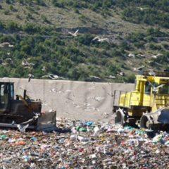 Trash – A buried nightmare