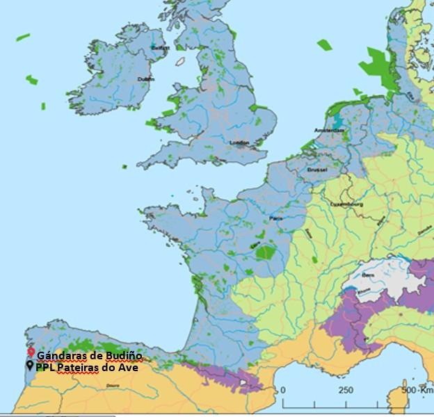 Think European, Act Locally