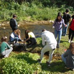 Ribeira da Lage, em Oeiras: sinais de contaminação comprometem potencial ecológico