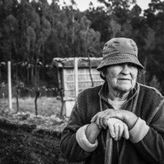 Pandemia não trava os pequenos agricultores