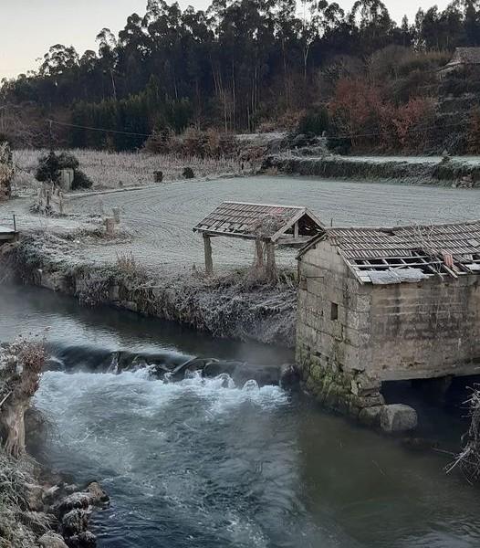 As zonas húmidas, um ecossistema a preservar