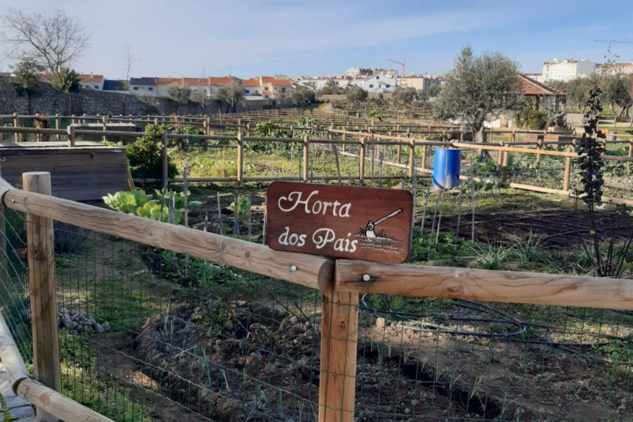 Hortas Sociais da Quinta do Chinco