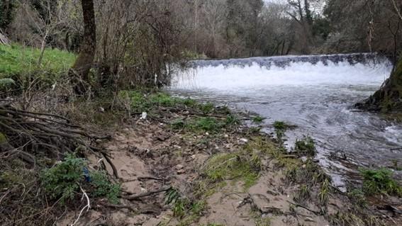 Ação de limpeza da praia fluvial nas margens do Rio Antuã