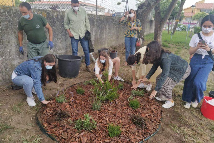 Brigada da Floresta Eco-Escolas em ação