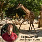 Conservação e preservação das espécies em vias de extinção: o papel do Zoo de Lisboa
