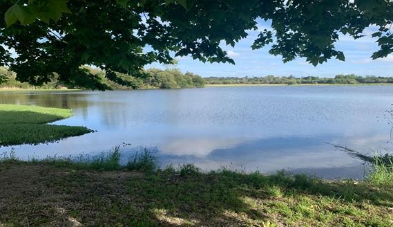 Lagoa dos Teixoeiros: um ecossistema em recuperação