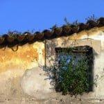 A-Natureza-janela-1024x768