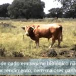 aliment_bio-300x166